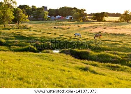 Kansas pastureland, late spring sunset; horses grazing - stock photo