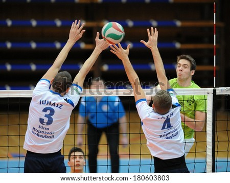 KAPOSVAR, HUNGARY - FEBRUARY 25: Peter Juhasz (white 3) in action at a Hungarian National Championship volleyball game Kaposvar (white) vs. Sumeg (green), February 25, 2014 in Kaposvar, Hungary. - stock photo