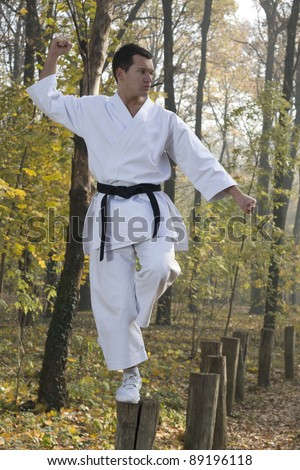 Karate training in nature in kungfu stile - stock photo