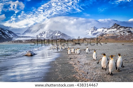 Katabatic winds encroach on St. Andrews Bay on South Georgia - stock photo