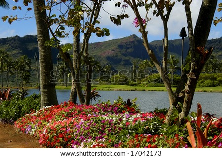 Kauai mountain peak is framed by two wild orchid trees and a bed full of blooming color.  Fresh water lagoon separates the two. - stock photo