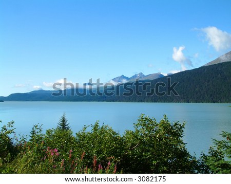 Kenai Peninsula - stock photo