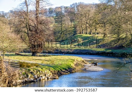 Kent River in Levens Park, Cumbria, England  - stock photo