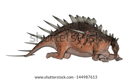 Kentrosaurus dinosaur with lots of spike resting in white background - stock photo
