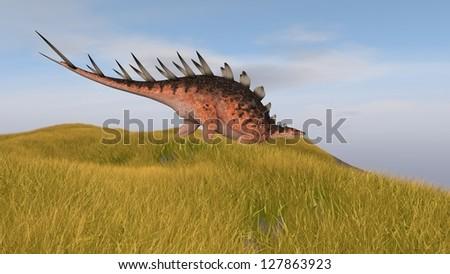 kentrosaurus in grassland - stock photo