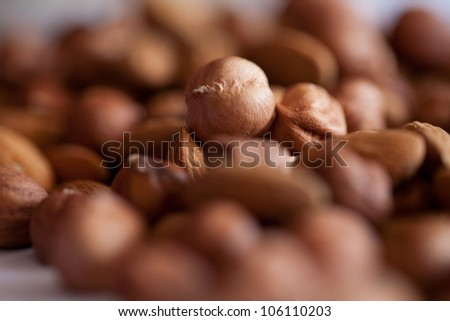 kernel and hazelnut's and almond in pile - stock photo