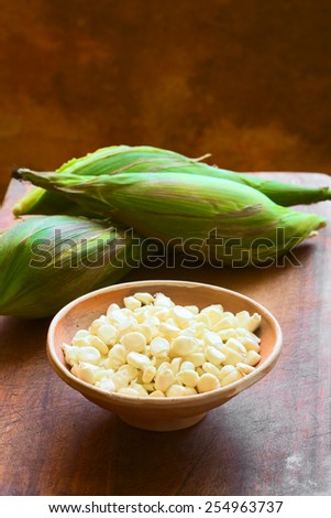 Kernels of white corn called Peruvian or Cuzco corn (Choclo in Spanish), typically found in Peru and Bolivia, photographed with natural light (Selective Focus, Focus one third into the kernels)      - stock photo