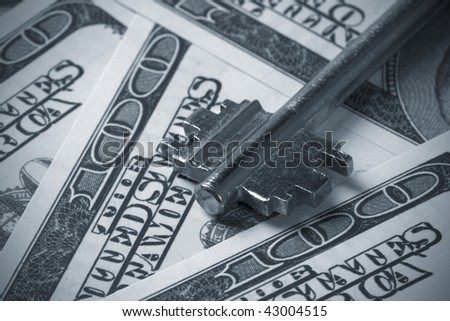 Key to Financial Success,dual tone - stock photo
