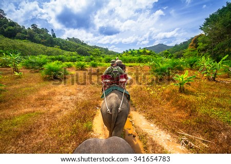 KHAO SOK, THAILAND - NOV 13, 2012: Unidentified people on the elephant trekking in Khao Sok National Park, Thailand. This is one of the biggest tourist attraction in Phang Nga province. - stock photo
