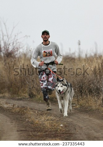 Kharkov, UKRAINE -?? November 15, 2014: Roman Golovko at canicross heats during Men's 3100 m at Sled dogs dry land race Autumn Cup - 2014 - stock photo