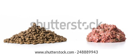 kibble and raw pile of food isolated on white background - stock photo
