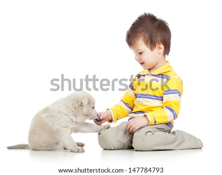 kid boy playing with puppy dog - stock photo