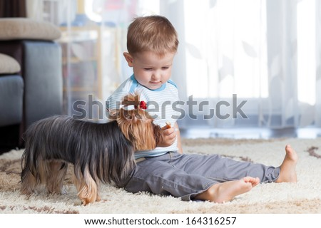 kid feeding pet dog - stock photo