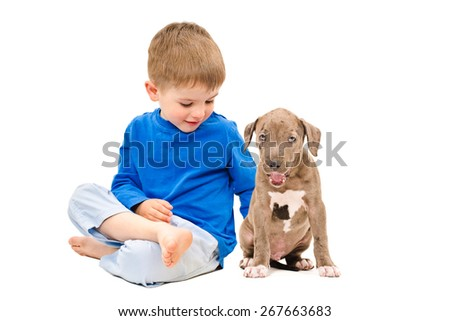 Kid sitting with a puppy breed pit bull isolated on white background - stock photo