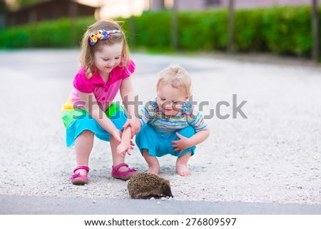 Kids playing with a hedgehog. Children and pets. Little girl and adorable baby boy play with a wild animal. Preschooler watching animals outdoors in summer. - stock photo