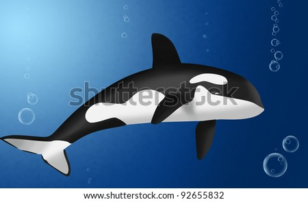 killer whale in deep blue - stock photo
