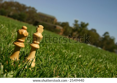 King and queen chess pieces outside in green grass - stock photo