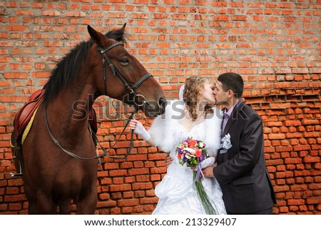 Kiss of the groom and the bride during walk in their wedding day against a brown horse and old brick wall - stock photo