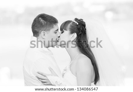 Kissing wedding couple - stock photo