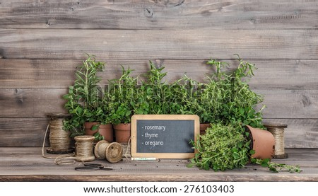 Kitchen herbs with chalkboard and vintage scissors. Food  ingredients rosemary, thyme, oregano - stock photo