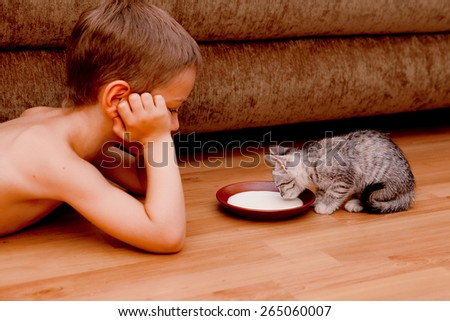 kitten and a boy - stock photo