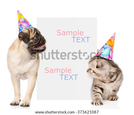 Kitten and pug puppy  in birthday hats peeking from behind empty board. Space for text. isolated on white background - stock photo