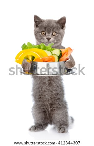 Kitten holding bowl of vegetables. isolated on white background. - stock photo