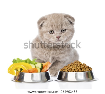 Kitten sitting with a bowls of dry cat food and vegetables. isolated on white background - stock photo