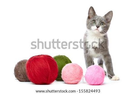 Kitten with a lot of balls of yarn. Isolated on white background - stock photo