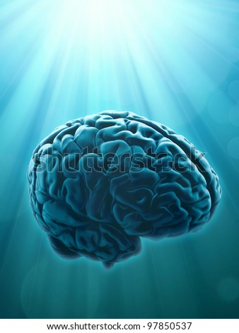 Knowledge and creativity concept illustration with human brain - stock photo