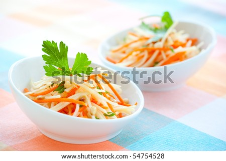 kohlrabi and carrot salad with pine nut,parsley and green onion - stock photo