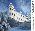 Konopiste Chateau in winter, Czech Republic - stock photo