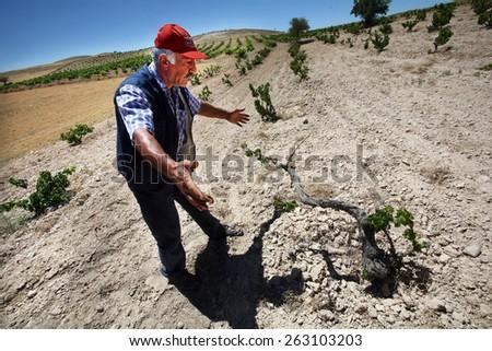 KONYA, TURKEY - JULY 02: Turkish farmer in drought field on July 02, 2008 in Konya, Turkey.  - stock photo
