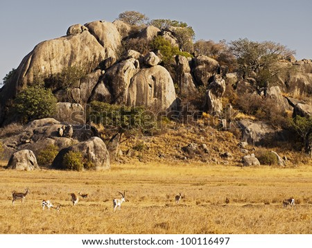 Kopjes mountain, Serengeti. Tanzania - stock photo