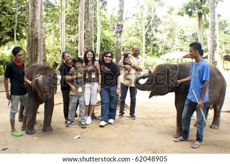 KUALA GANDAH, MALAYSIA - SEPTEMBER 25 : Visitors playing with Langsat and Pandan at the Elephant Orphanage Sanctuary during the Elephant Awareness Program September 25 2010 in Kuala Gandah, Malaysia. - stock photo