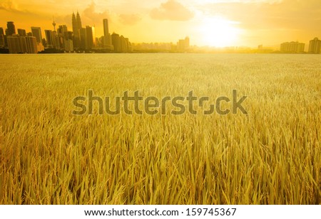 kuala lumpur skyline over grass land field suring sunset - stock photo