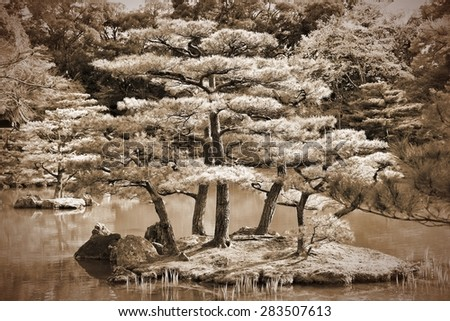 Kyoto, Japan - Japanese garden at Kinkakuji Temple. Retro image sepia tone. - stock photo