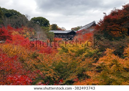 KYOTO, JAPAN -NOV 24, 2012: People visit Tofukuji Temple in autumn season in Kyoto, Japan. Tofukuji is the most popular autumn spot in Kyoto which spans a valley of lush maple trees. - stock photo