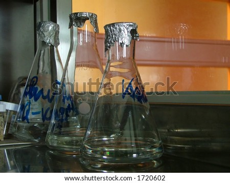 labelled bottles in the lab - stock photo