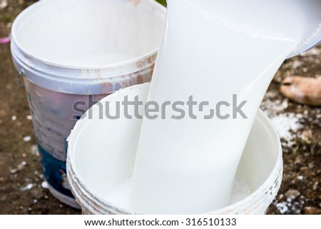 labor pouring white paint from a bucket - stock photo