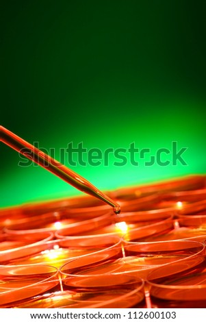 Laboratory pipette with drop of liquid over Petri dishes with biological analysis solution for a biotechnology experiment in a science research lab - stock photo