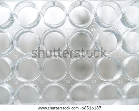 Laboratory plate wells with numbering - stock photo