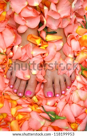 lacquered feet nails in rose leaves - stock photo