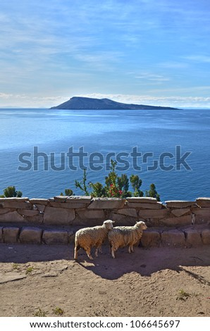 Lago Titicaca. Puno. - stock photo