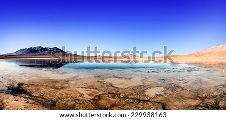 "Laguna at the ""Ruta de las Joyas altoandinas"" in Bolivia with pink flamingos fishing in the lake. - stock photo"