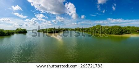 Lake and Mangroove panoramic view, traveling riviera Maya, Mexico adventure. - stock photo