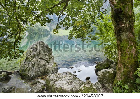 lake and tree in Alps - stock photo
