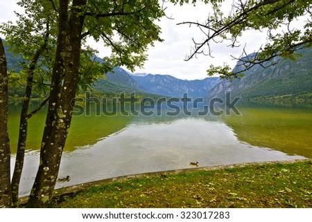 Lake Bohinj, Slovenia in autumn - stock photo