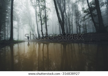 lake in forest with fog - stock photo