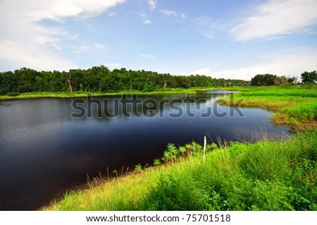 Lake in Paynes Prairie State Preserve, FL - stock photo